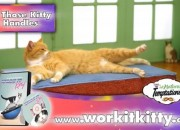 ZENE - Work It Kitty